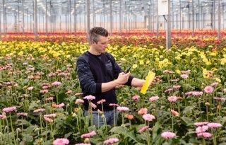 Royal+Brinkman+lanceert+app+voor+digitaal+scouten+plantenziekten