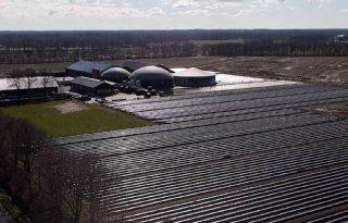Restwarmte zorgt voor eerste Drentse asperges in 2021