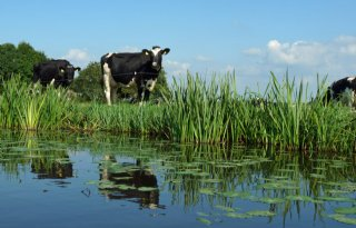 Nieuw beloningssysteem duurzaam beheer West-Nederland