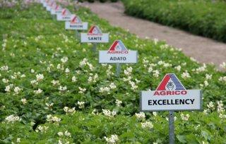 Agrico+presenteert+pakket+duurzame+aardappelrassen