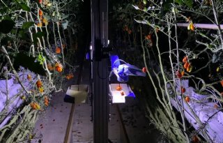 Japanse+start%2Dup+introduceert+tomatenrobot+in+Europa