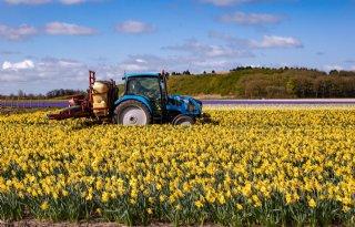 Hoogheemraadschap+controleert+bloembollenbedrijven