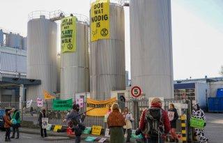 Milieuactivisten bezetten terrein FrieslandCampina