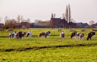 LTO: onteigening boerengrond gaat niet werken