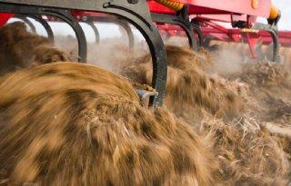 Varkensmarkt schudt op grondvesten na Duitse verlaging