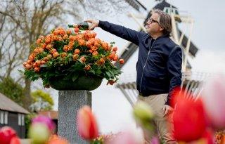 Guus Meeuwis doopt eigen tulp in Keukenhof