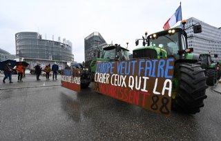 Franse boeren demonstreren in Straatsburg tegen GLB
