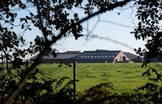 LLTB-bestuurder: 'Grote claims op Limburgse landbouwgrond'