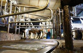 Broer Roorda melkt tien jaar zonder melkklauw