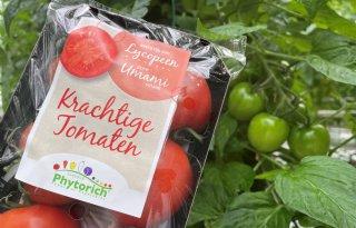 Duijvestijn levert nieuwe gezonde tomaat aan Deen