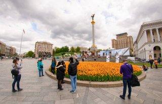 Hollandse tulpen staan symbool voor Oekraïense onafhankelijkheid