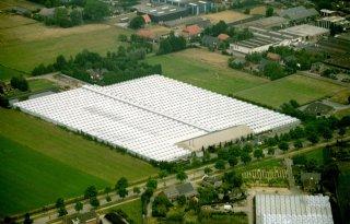 Extra ontwikkelruimte voor solitaire glastuinbouwbedrijven Brabant