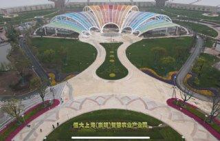 FoodVentures oogst eerste glasgroenten in Chinese kas