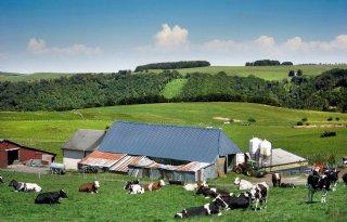 Landbouwministers: meer EU-geld naar platteland