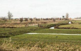 LTO Nederland vraagt om noodmaatregelen