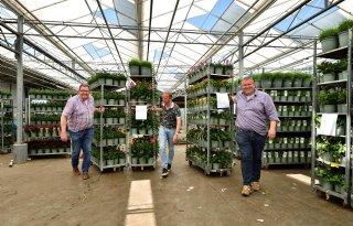 Van Woudenberg Tuinplanten wil vooral waarde toevoegen