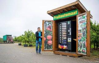 Limburgse telers: 'Van afstand kijken, geeft nieuwe inzichten'