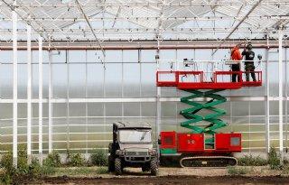 Agrarische+sector%3A+%27Chiptekort+raakt+land%2D+en+tuinbouw%27