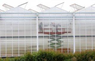 MJ-tech is nieuwe partner van Dutch Greenhouse Delta