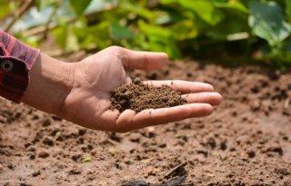 Webinar: Carbon farming, is dat iets voor u?