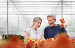 Twaalf bloemen gaan over op nieuwe emmer