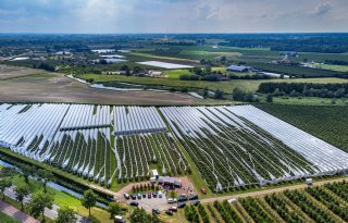 Gelderland haalt 1.972 hectare landbouwgrond uit Aerius