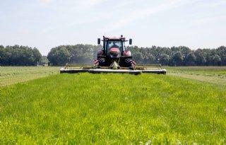 Grasland kan positief bijdragen aan klimaatverbetering
