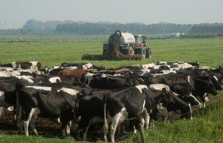 Schouten staat open voor aanpassingen Nitraatrichtlijn