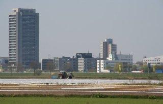 Rapport verdienvermogen Brabantse boeren: 'Monden vallen open van inhoud'