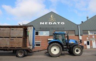 Poolprijzen Nedato variëren van 7 tot 17 euro