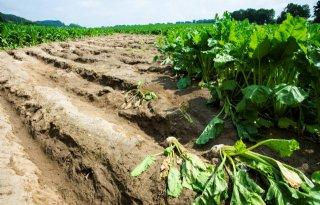 LLTB schat waterschade op honderden miljoenen euro's
