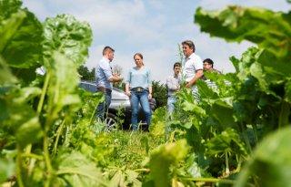 Carola Schouten bezoekt getroffen boeren in Limburg