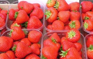 Milieuorganisatie vindt residuen in bakjes aardbeien