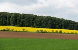 Binnen Duitsland grote verschillen in eigendom landbouwgrond