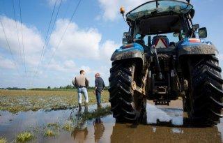 Limburgse akkerbouwer: 'Vergoed ook buitendijkse schade'