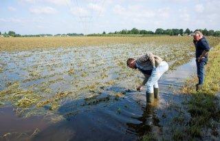 CDA wil rampenregeling Rijk ook voor Noord-Brabant