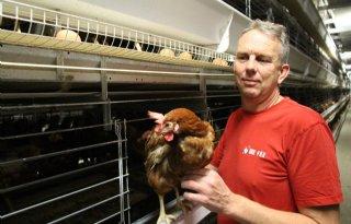 Nuttig werkbezoek LNV bij pluimveehouders