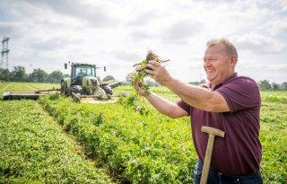 Met vanggewas extra oogst en betere bodem