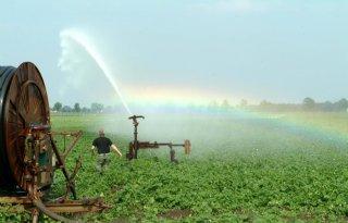 Agrosector probeert vooruit te kijken bij klimaatverandering