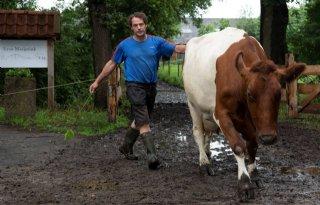 Boeren landgoed Vilsteren groeien in veelzijdigheid