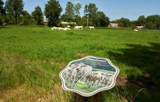 Familie+Van+Lieshout+ziet+enorme+vleesconcurrentie+uit+het+buitenland