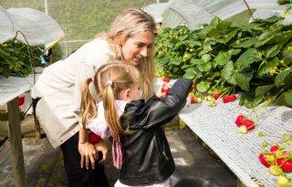 Estavana Polman doopt nieuw aardbeienras in Andijk