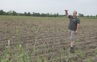Schade wateroverlast nu zichtbaar in Brabant, pootgoed verdwenen