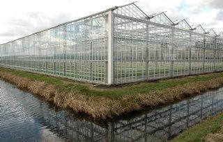 Sectoranalyse+voor+duurzame+inzetbaarheid+glastuinbouw