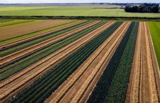 Dit maakt het Nationaal Strategisch Plan belangrijk voor boeren