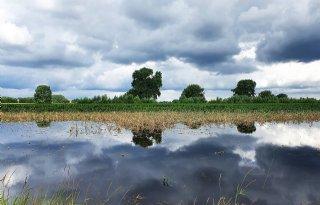 Opluchting én onzekerheid bij boeren over waterschaderegeling