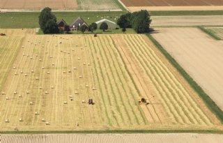 Per jaar 7.000 hectare landbouwgrond minder