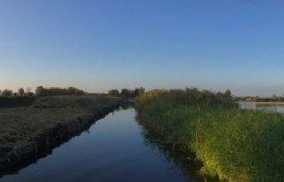 Kwekers+vrezen+overlast+door+aanleg+natuurgebied+bij+Amsterdam