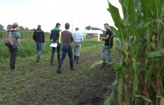 Bij maisdemonstratie draait het om toekomstbestendige teelt