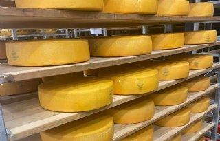 Boeren+Schiermonnikoog+brengen+kaas+Van+Schier+op+de+markt